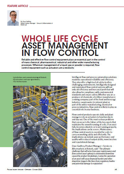 Whole Life Cycle Asset Management in Flow Control