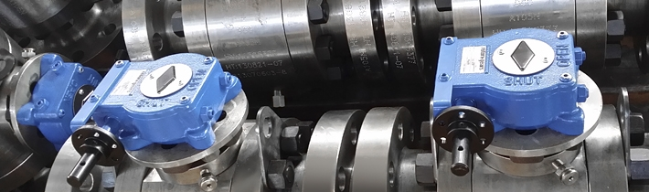 Rotork Gears